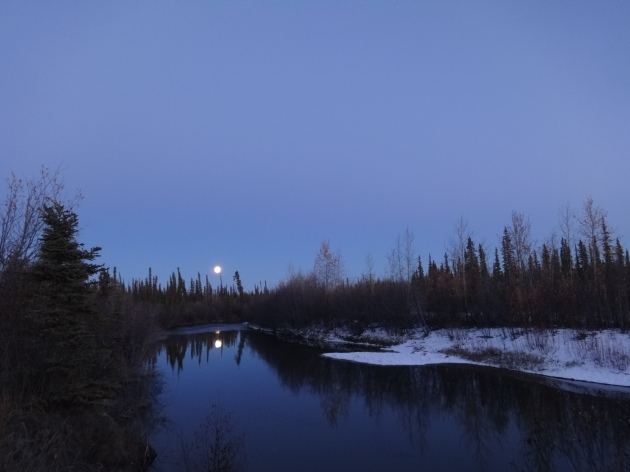Last night's moon over the slough.