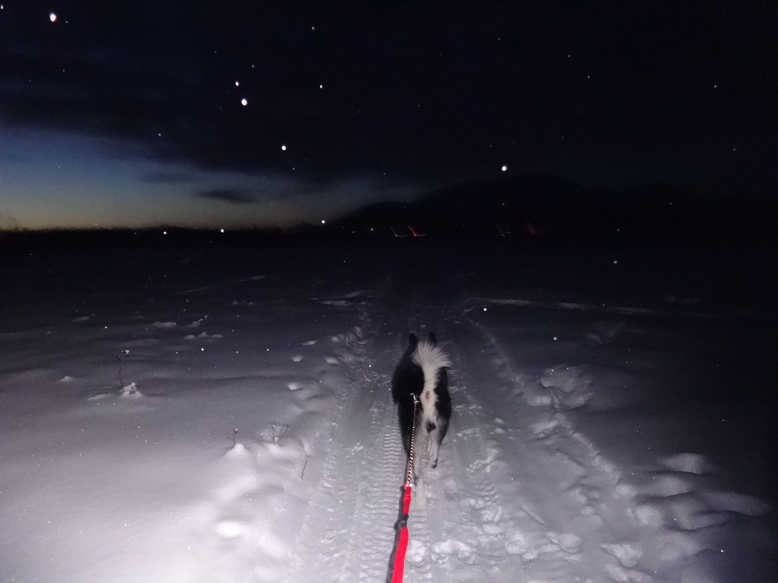 skijortotown