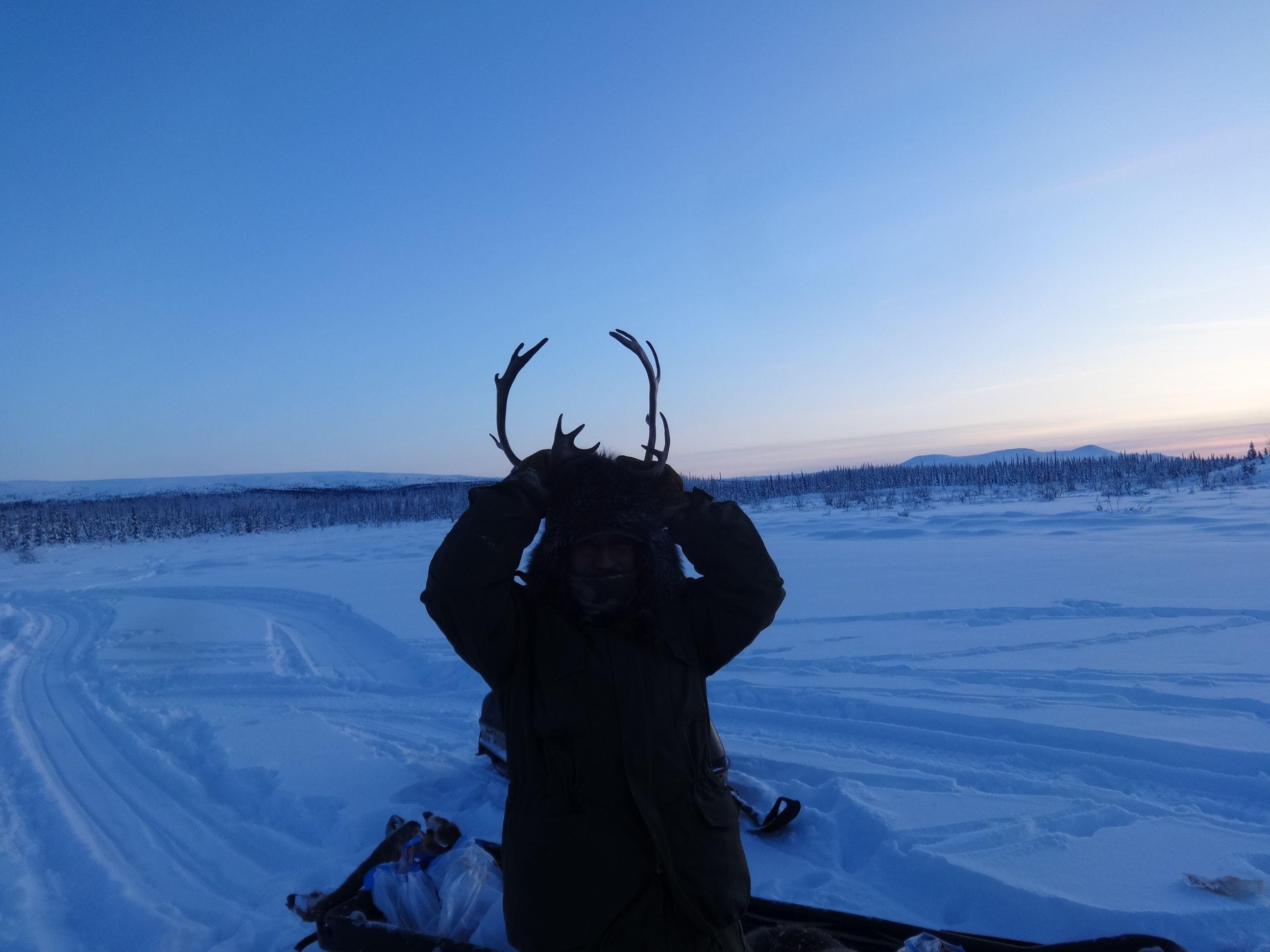 albert's antlers