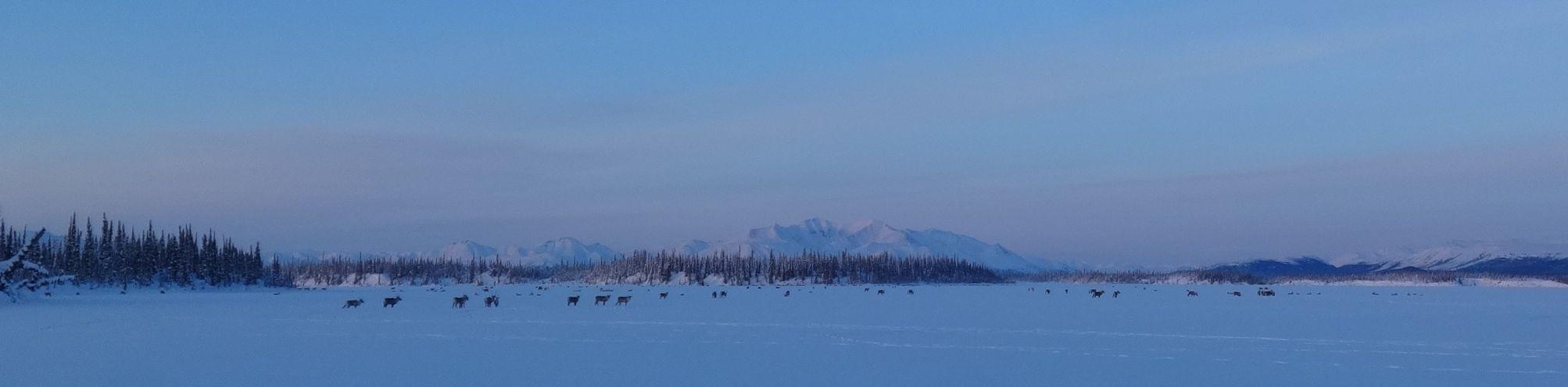 caribou airport lake 1
